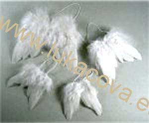 Křídla z peří  d4feed930d